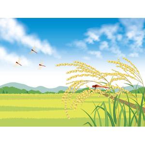 フリーイラスト, ベクター画像, AI, 風景, 稲穂, 水田(田んぼ), とんぼ(トンボ), 赤とんぼ(赤トンボ), 秋, 田舎, 青空, 日本