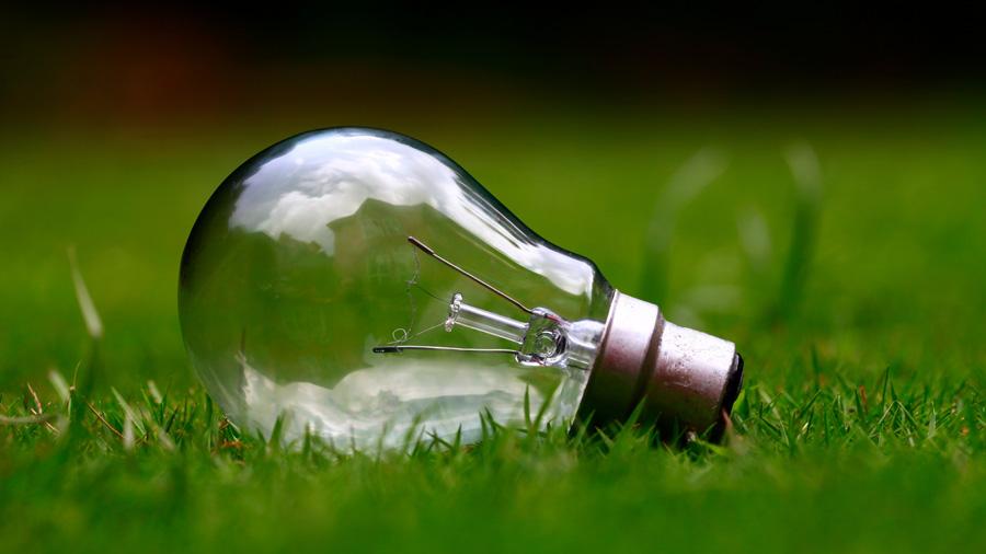 フリー 写真芝生の上に置かれた白熱電球