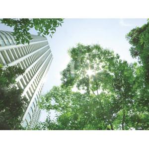 フリー写真, 風景, 建造物, 建築物, 高層ビル, マンション(団地), 樹木, 太陽光(日光), 日本の風景, 東京都, 住宅