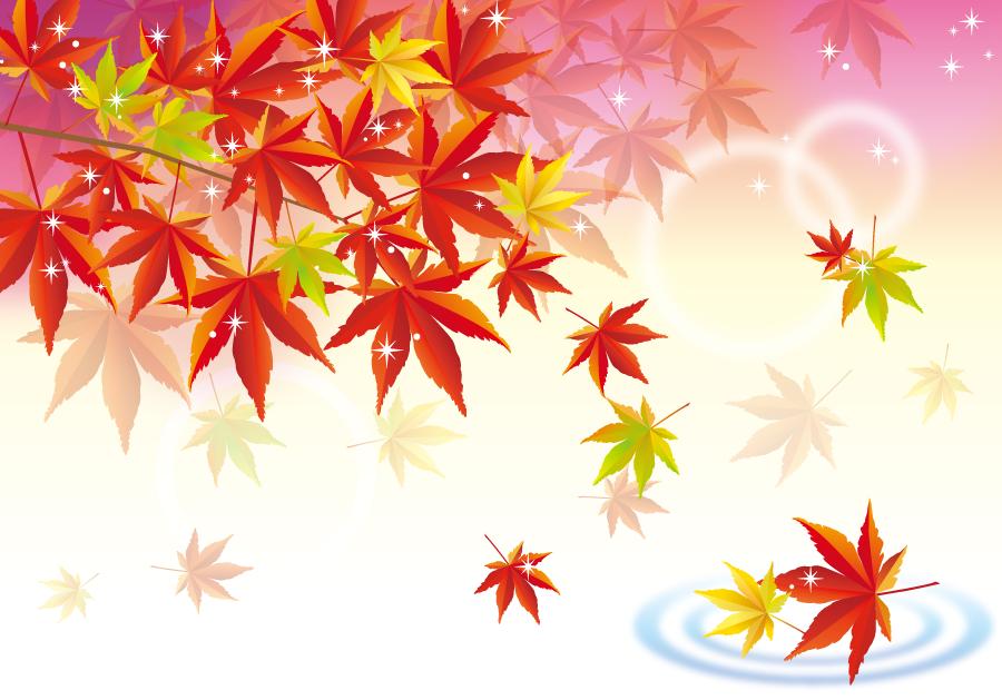 フリー イラスト紅葉の落ち葉と水の波紋