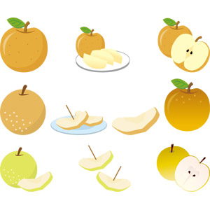 フリーイラスト, ベクター画像, EPS, 食べ物(食料), 果物(フルーツ), 梨(ナシ), 秋