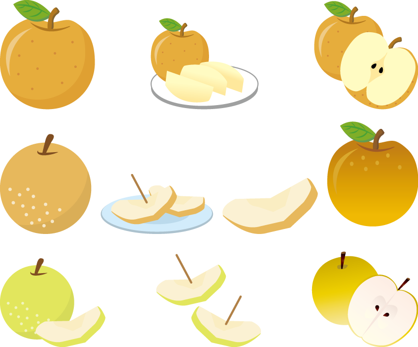 フリー イラスト梨のセット