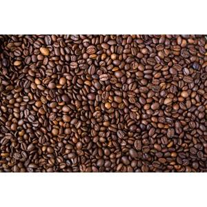 フリー写真, コーヒー豆, コーヒー(珈琲)
