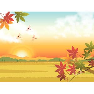 フリーイラスト, ベクター画像, AI, 風景, 水田(田んぼ), 秋, もみじ(カエデ), 紅葉(黄葉), 夕日, 日の入り, 夕焼け, 夕暮れ(夕方), 田舎, とんぼ(トンボ), 赤とんぼ(赤トンボ)