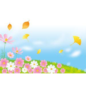 フリーイラスト, ベクター画像, AI, 風景, 自然, 植物, 花, コスモス(秋桜), 丘, 青空, 葉っぱ, もみじ(カエデ), イチョウ, 紅葉(黄葉), 秋, 落葉(落ち葉)