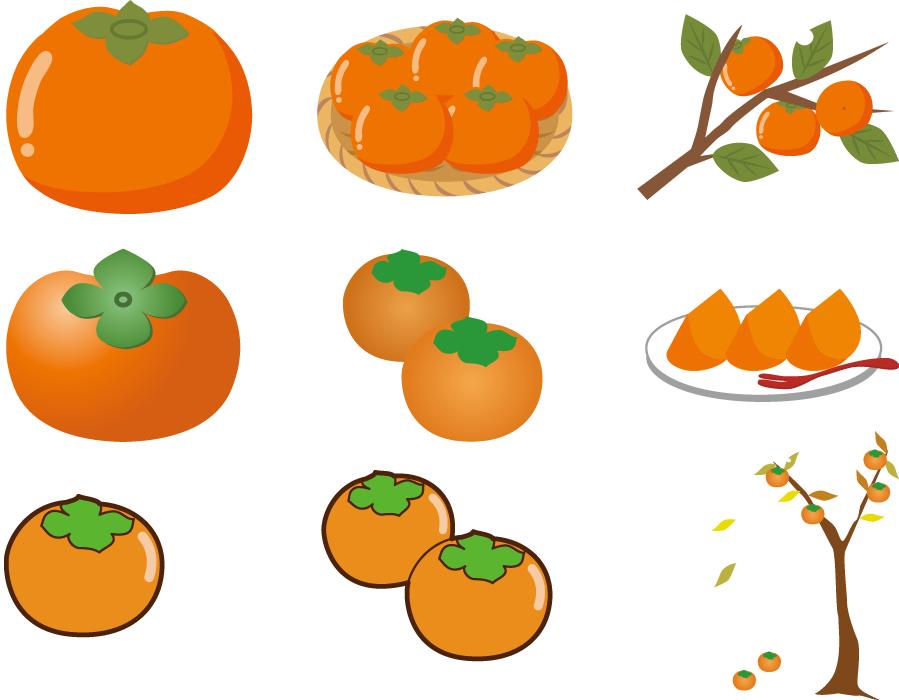 フリー イラストいろいろな柿のセット