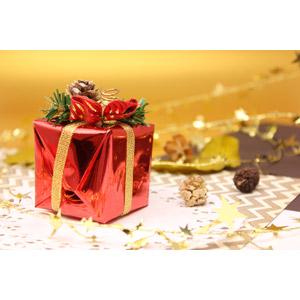 フリー写真, 年中行事, クリスマス, 12月, プレゼント, プレゼント箱, 松ぼっくり(松笠)