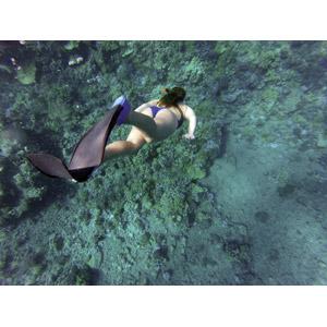 フリー写真, 人物, 女性, 外国人女性, 水着, シュノーケリング, 潜水, 足ひれ(フィン), 海中, 海