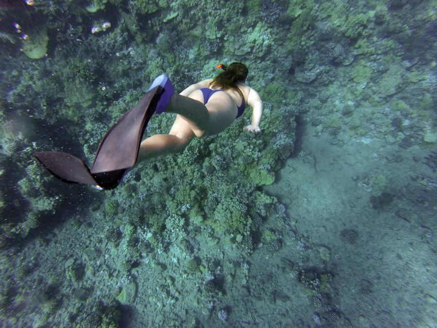 フリー 写真シュノーケリングで潜水する外国人女性