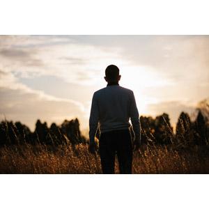 フリー写真, 人物, 男性, 外国人男性, 後ろ姿, 草むら, 夕暮れ(夕方)