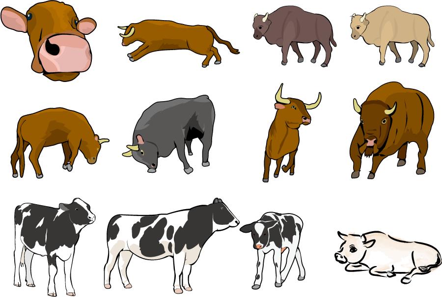 フリー イラスト12種類の牛のセット