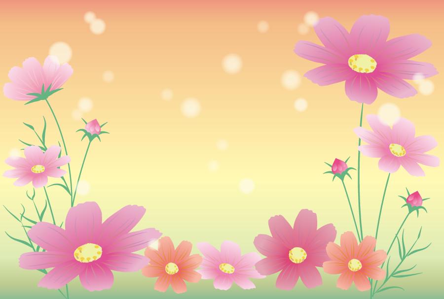 フリー イラストコスモスの花と玉ボケの背景