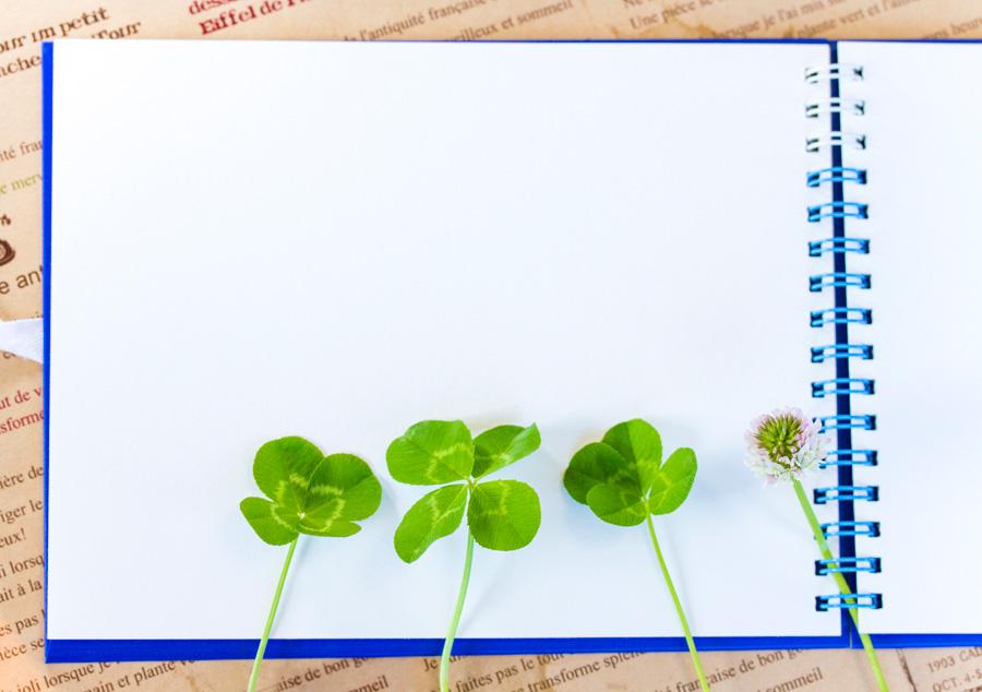 フリー 写真四つ葉のクローバーとスケッチブック