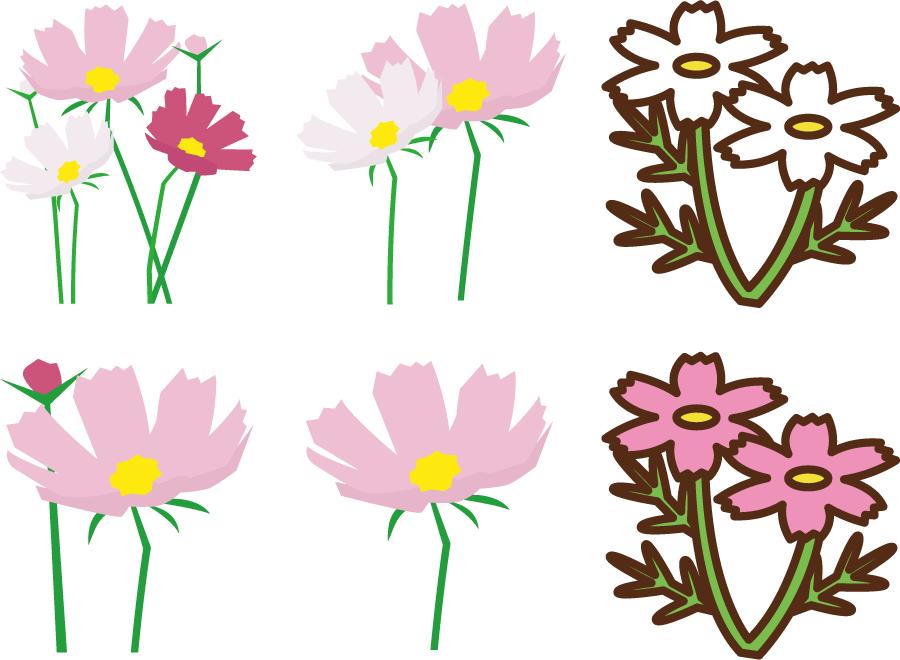 フリー イラスト6種類のコスモスの花のセット