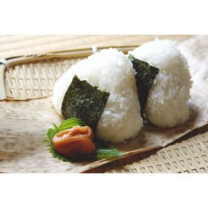 フリー写真, 食べ物(食料), 料理, 米料理, おにぎり(おむすび), 日本料理, 和食, 梅干し(うめぼし)