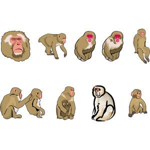 フリーイラスト, ベクター画像, EPS, 動物, 哺乳類, 猿(サル), ニホンザル, 毛づくろい, 動物の顔, 親子(動物), 子供(動物)