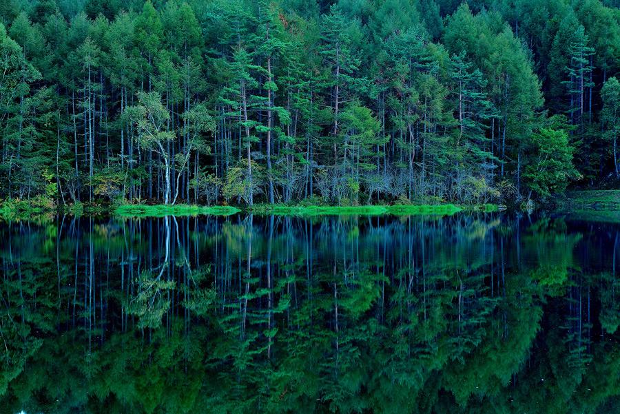 フリー写真 木々が映る御射鹿池の風景