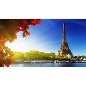 フリー写真, 風景, 建造物, 建築物, 塔(タワー), エッフェル塔, 河川, セーヌ川, もみじ(カエデ), 紅葉(黄葉), 秋, 青空, フランスの風景, パリ