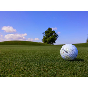 フリー写真, スポーツ, 球技, ゴルフ, ゴルフボール, 青空, 芝生