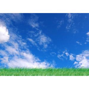 フリー写真, 風景, 自然, 空, 青空, 雲, 草むら