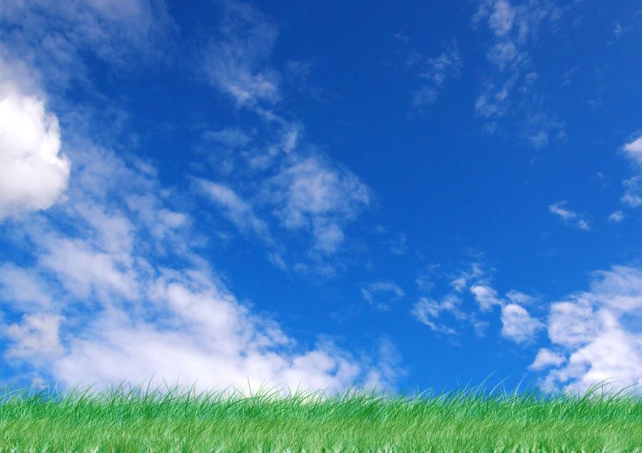 フリー写真 青空と草むらの風景