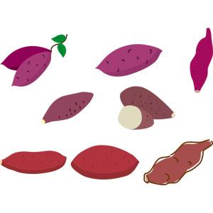 フリーイラスト, ベクター画像, EPS, 食べ物(食料), 野菜, 芋類, さつまいも(サツマイモ), 秋