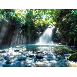 フリー写真, 風景, 自然, 滝, 河川, 森林, 木漏れ日, 太陽光(日光), 日本の風景, 熊本県