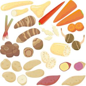 フリーイラスト, ベクター画像, EPS, 食べ物(食料), 野菜, 芋類, さつまいも(サツマイモ), じゃがいも(ジャガイモ), 里芋(サトイモ), 長いも(ナガイモ), ちょろぎ(チョロギ), くわい(クワイ), 蓮根(レンコン)