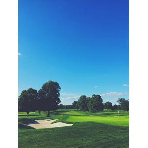 フリー写真, 風景, 青空, スポーツ, 球技, ゴルフ, 芝生
