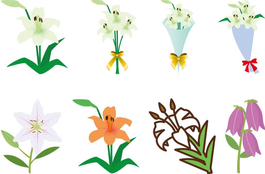 フリーイラスト 8種類のユリの花のセット