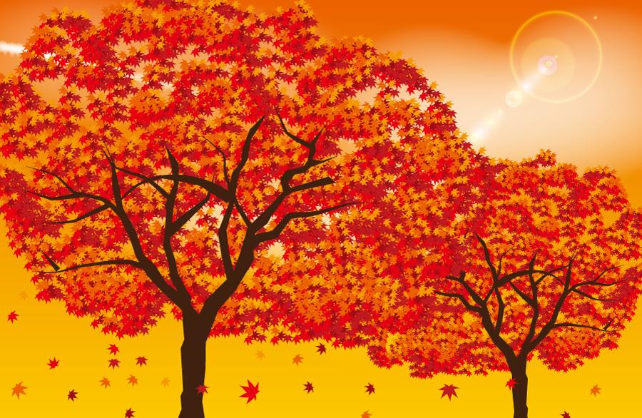 フリーイラスト 紅葉したもみじの木の風景