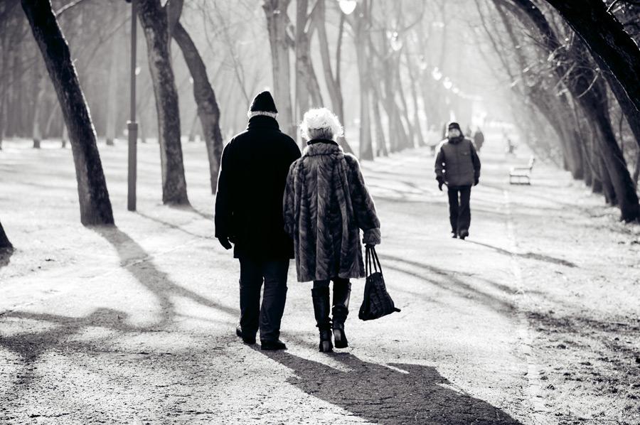 フリー写真 並木道を歩く老夫婦の後ろ姿