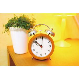 フリー写真, 風景, 時計, 目覚まし時計, 観葉植物, 電気スタンド