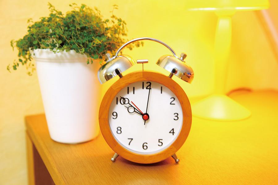フリー写真 目覚まし時計と観葉植物