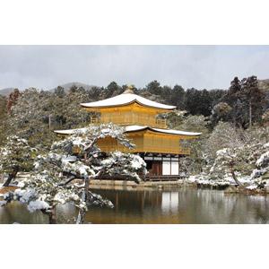 フリー写真, 風景, 建造物, 建築物, 寺院, 雪, 冬, 金閣寺(鹿苑寺), 京都府, 日本の風景, 世界遺産