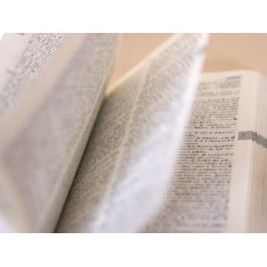 フリー写真, 本(書籍), 辞書(辞典), 勉強(学習), 英語