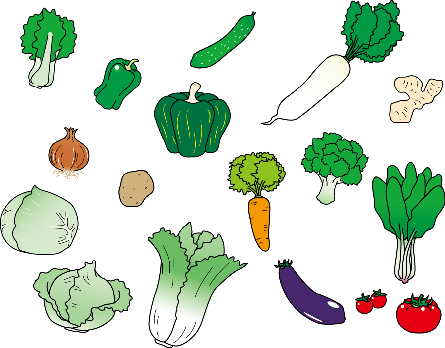 フリーイラスト チンゲンサイなどの17種類の野菜のセット