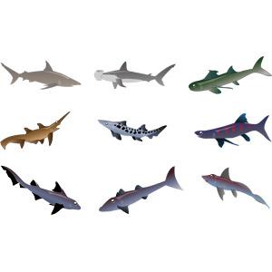 フリーイラスト, ベクター画像, AI, 動物, 魚類, 鮫(サメ), シュモクザメ, ヨシキリザメ, ノコギリザメ, ホシザメ, アブラザメ, イモリザメ