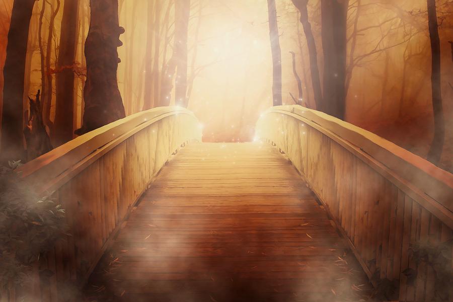 フリーイラスト 霧の森の中の橋