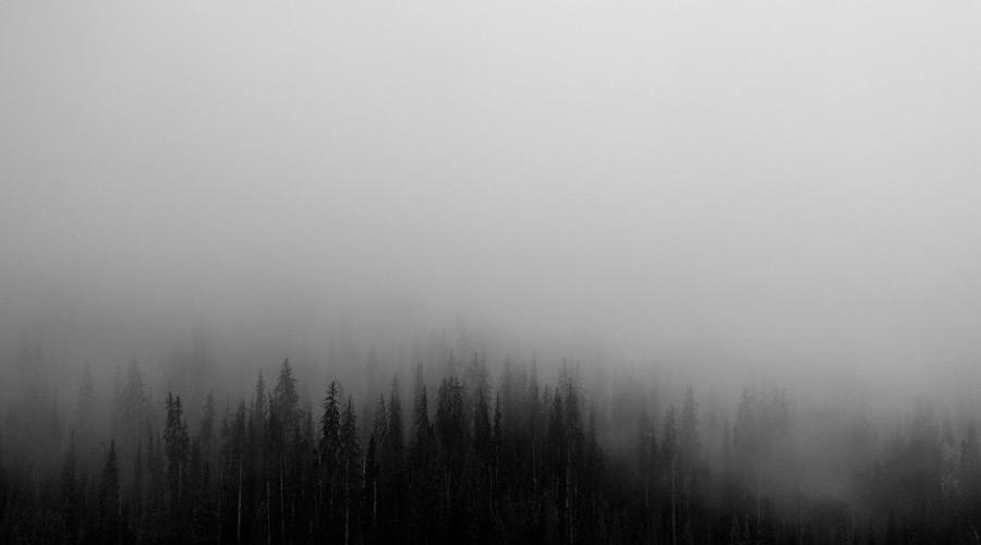 フリー写真 霧のかかる山の木々の風景