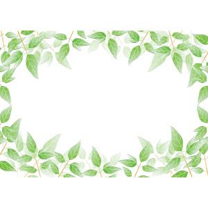 フリーイラスト, ベクター画像, AI, 背景, フレーム, 囲みフレーム, 植物, 葉っぱ, 新緑