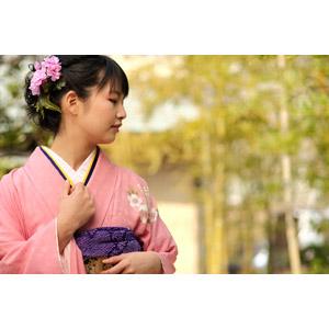 フリー写真, 人物, 女性, アジア人女性, 日本人, 女性(00047), 和服, 着物, 成人式, 正月, 1月, 横顔