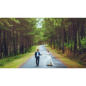 フリー写真, 人物, カップル, 花婿(新郎), 花嫁(新婦), 結婚式(ブライダル), 二人, 手をつなぐ, 道路, 森林, タキシード, ウェディングドレス, 人と風景