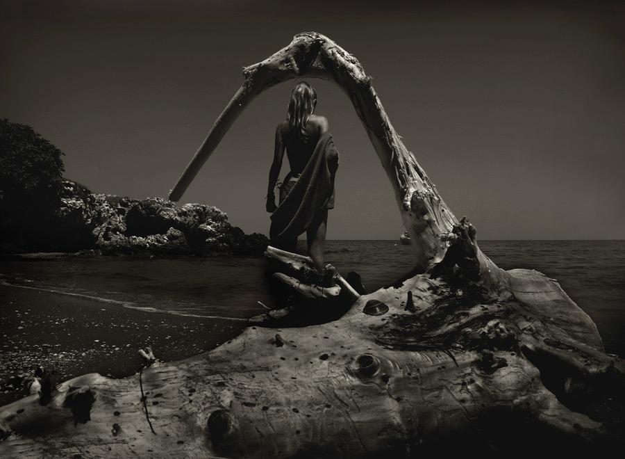 フリー写真 砂浜の流木と女性の後ろ姿