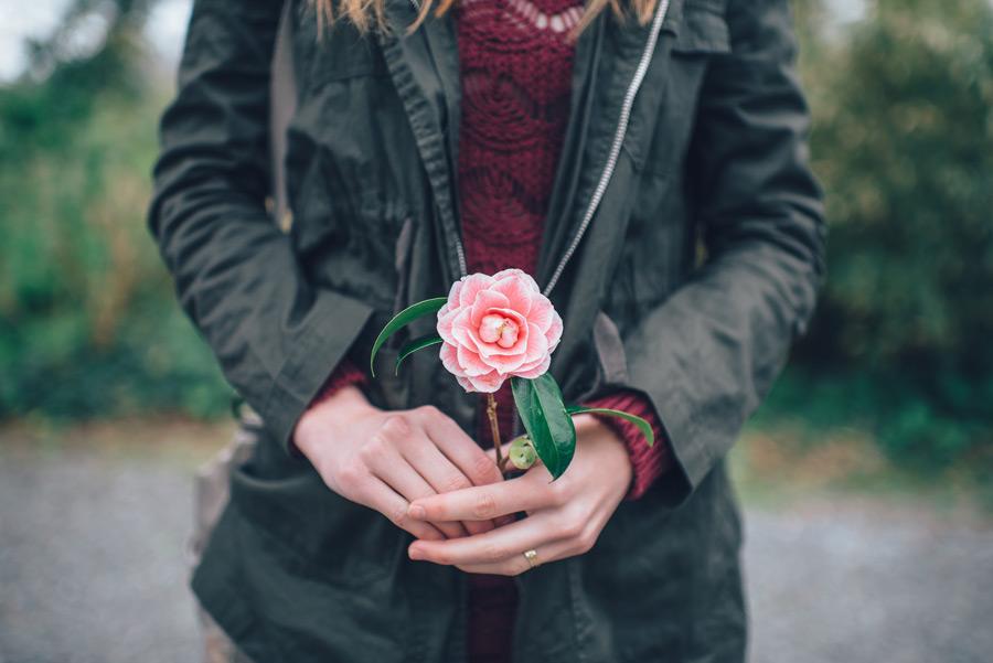 フリー写真 一輪の花を持つ女性の手