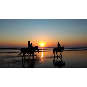 フリー写真, 風景, 人と風景, 人と動物, 動物, 哺乳類, 馬(ウマ), 乗馬, シルエット(人物), シルエット(動物), 夕暮れ(夕方), 夕焼け, 夕日, ビーチ(砂浜)
