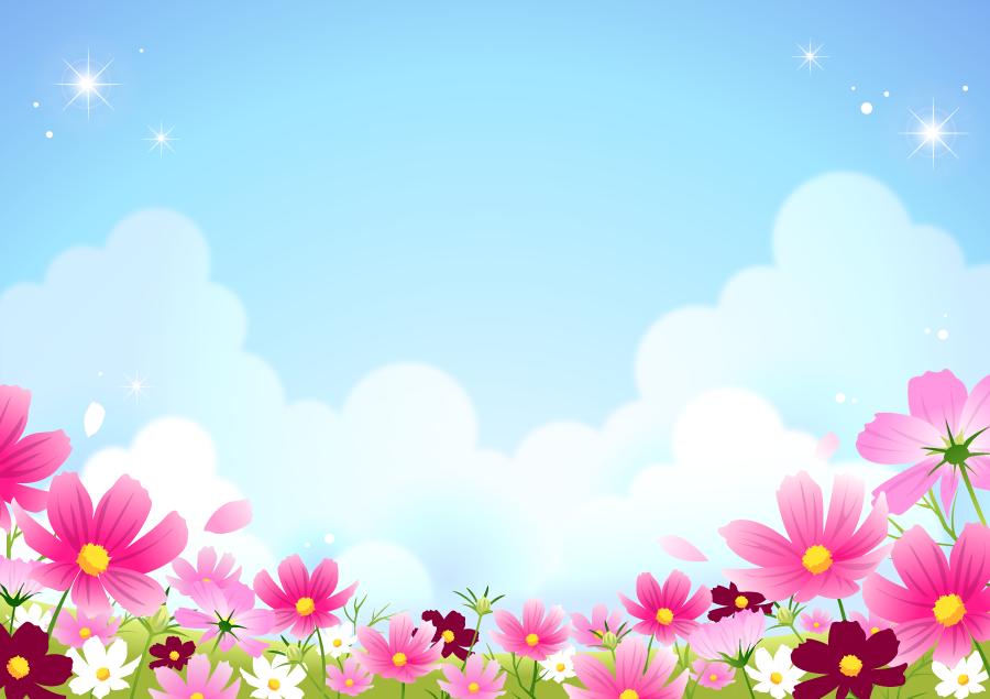 フリーイラスト コスモス畑と青空の風景
