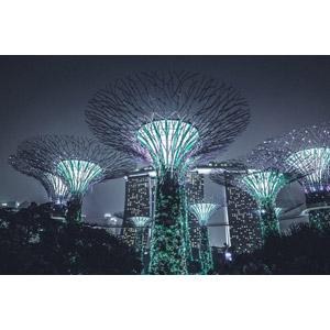 フリー写真, 風景, オブジェ, 夜景, 夜, ガーデンズ・バイ・ザ・ベイ, シンガポールの風景, マリーナベイ・サンズ, 高層ビル