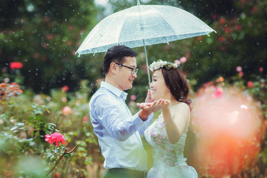 フリー写真 雨が降る傘の中で向かい合う新郎新婦