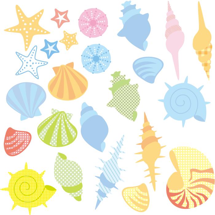 フリーイラスト 貝殻とヒトデとウニ殻のセット
